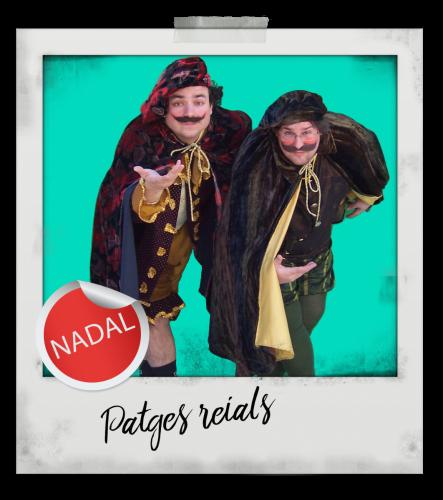 polaroid patges